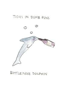 bottlenose