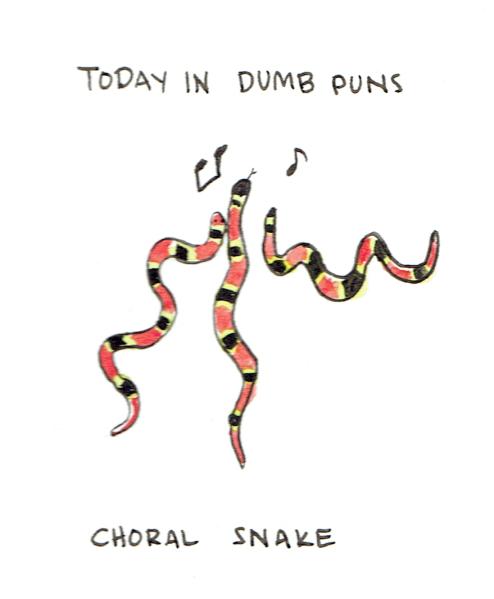 choral snake